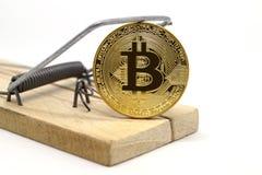 Trappola per topi con il bitcoin dell'oro Immagine Stock