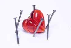 trapprd сердца Стоковое Фото