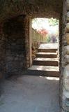 Trappuppgång i en trädgård Royaltyfria Bilder