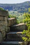 Trappuppgång i vingårdarna Arkivbilder