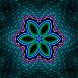 Trapunta floreale della stella della maglia Fotografia Stock