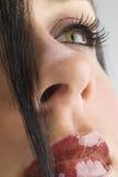 Trapuntare di capelli Fotografia Stock Libera da Diritti