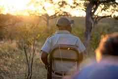 Traqueur de safari sur la commande de jeu photos libres de droits