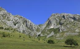 Trascau Mountains Royalty Free Stock Photography