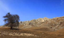 Trascau Mountains,Romania Stock Photography