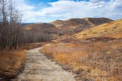 Trascini comunque il parco provinciale del bello ranch di Glenbow in Alberta immagine stock libera da diritti