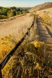 Trascini nelle colline pedemontana sopra Boise Idaho su una mattina di caduta fotografia stock