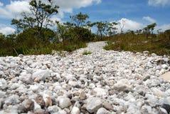 Trascini per raggiungere l'alta cascata del Tabuleiro Immagine Stock