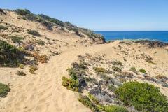 Trascini sopra le dune nella spiaggia in Almograve Immagine Stock