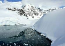 Trascuranza della baia calma in Antartide Fotografia Stock