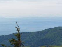 Trascuratezza dei Vosgi con le alpi nella distanza Fotografia Stock