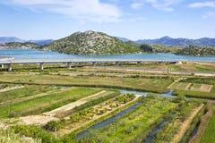 Trascuratezza del delta del fiume di Neretva in Croazia Immagine Stock Libera da Diritti