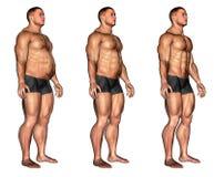 Trasformazione maschio della forma del muscolo immagini stock libere da diritti