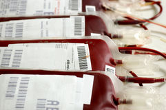 Trasfusione di sangue Fotografia Stock