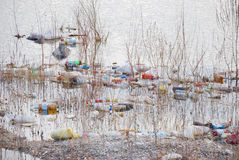 Trash. Floating polluting water in a pond Stock Photography