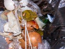 Trash. Stock Image