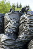 Trash bags. Black trash bags in the nature Royalty Free Stock Image