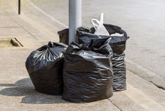 Trash bags Stock Photography