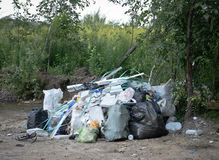 Trash bags in the woods. Day time Stock Photo