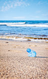 Trash on the beach Royalty Free Stock Photography