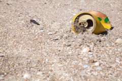 Trash on the beach. Crumpled tin cans of drink on a clean beach thrown as garbage Royalty Free Stock Image
