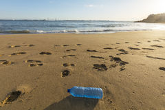 Trash on the beach, pollution, garbage. Stock Image