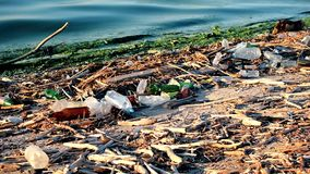 Trash on beach. With surf of polluted dirty water stock video footage