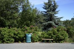 Trash bin and park bench with rose bush. Found in most parks a trash bin and park bench Royalty Free Stock Images
