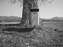 Trash can by large tree. A trash can in front of a large tree trunk done in black and white Stock Photos