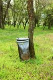 Trash can in park Stock Image