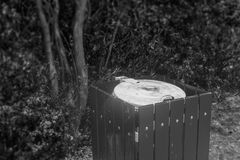 Trash can in the park surrounded by trees. Royalty Free Stock Photos