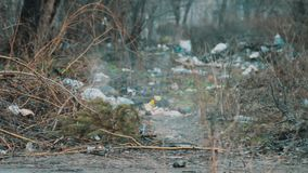 Trash on the Dumpe and couples with sewage. A lot of garbage, which lies on the streets stock video
