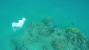 Trash floats over coral reefs in the red sea. Pollution stock video