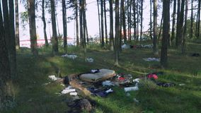 Trash in the forest, old clothes. Greenpeace stock video footage