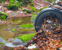 Trash in the forest. old tire Stock Photos