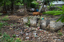 Trash on Nusa Penida Royalty Free Stock Photos