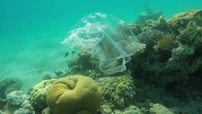 Trash plastic bag floats over coral reefs in the red sea. Pollution stock video footage