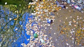 Trash polluting our waters. A large amount of trash polluting our waters, panning shoot stock video footage