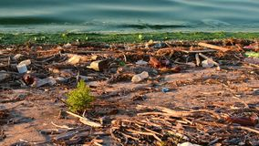 Trash on shore symbolizing environmental pollution. Large amount of trash on shore polluting the water symbolizing environmental pollution stock video footage