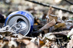 Trash in Woods Stock Photos