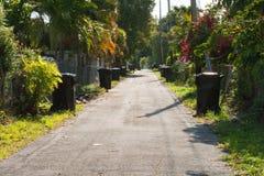 Trashcans на переулке Стоковое Изображение