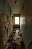 Trashed hallway of a house. Trashed hallway of an abandoned house Royalty Free Stock Image