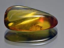 Traslucido giallo ambrato Fotografia Stock
