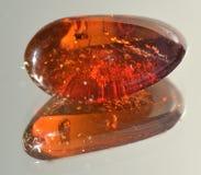 Traslucido rosso ambrato Immagini Stock