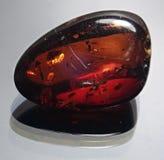 Traslucido rosso ambrato Fotografie Stock