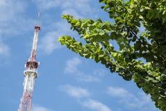 Trasmetta per radio l'antenna di trasmissione per la radio ed il segnale televisivo sull'albero verde, fondo del cielo blu immagine stock libera da diritti