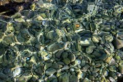 Trasparent sea water & stones royalty free stock image