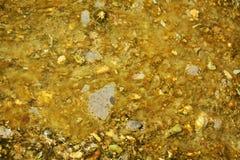 Trasparent vatten, gulingstenar, vatten, abstrakt bakgrund Royaltyfri Bild