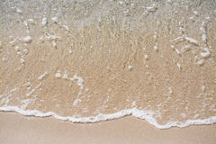 Trasparent water on a golden shore Stock Images