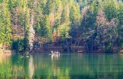 Trasporti con la gente sul lago nei precedenti delle alte montagne e della foresta verde, concetto del viaggio nel selvaggio, spa Fotografia Stock Libera da Diritti